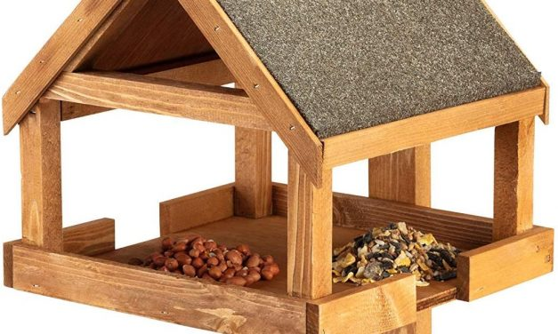 Best Bird Tables & Bird Feeding Stations 2020 UK