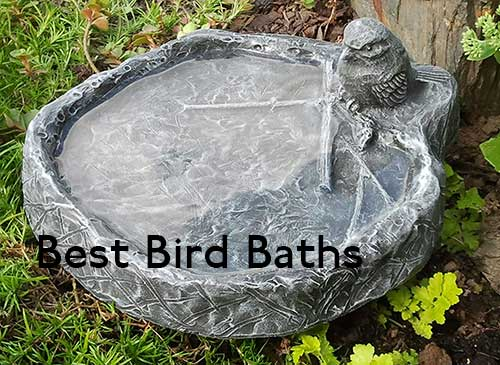 Best Bird Baths 2020 UK (Including Buying Guide)