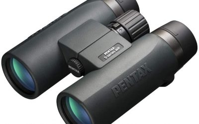 Best Bird Watching Binoculars 2021 UK